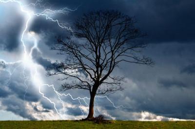 嵐の中の平安