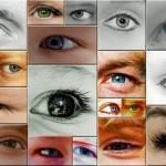 """(181) """"からだのあかりは目です。"""""""